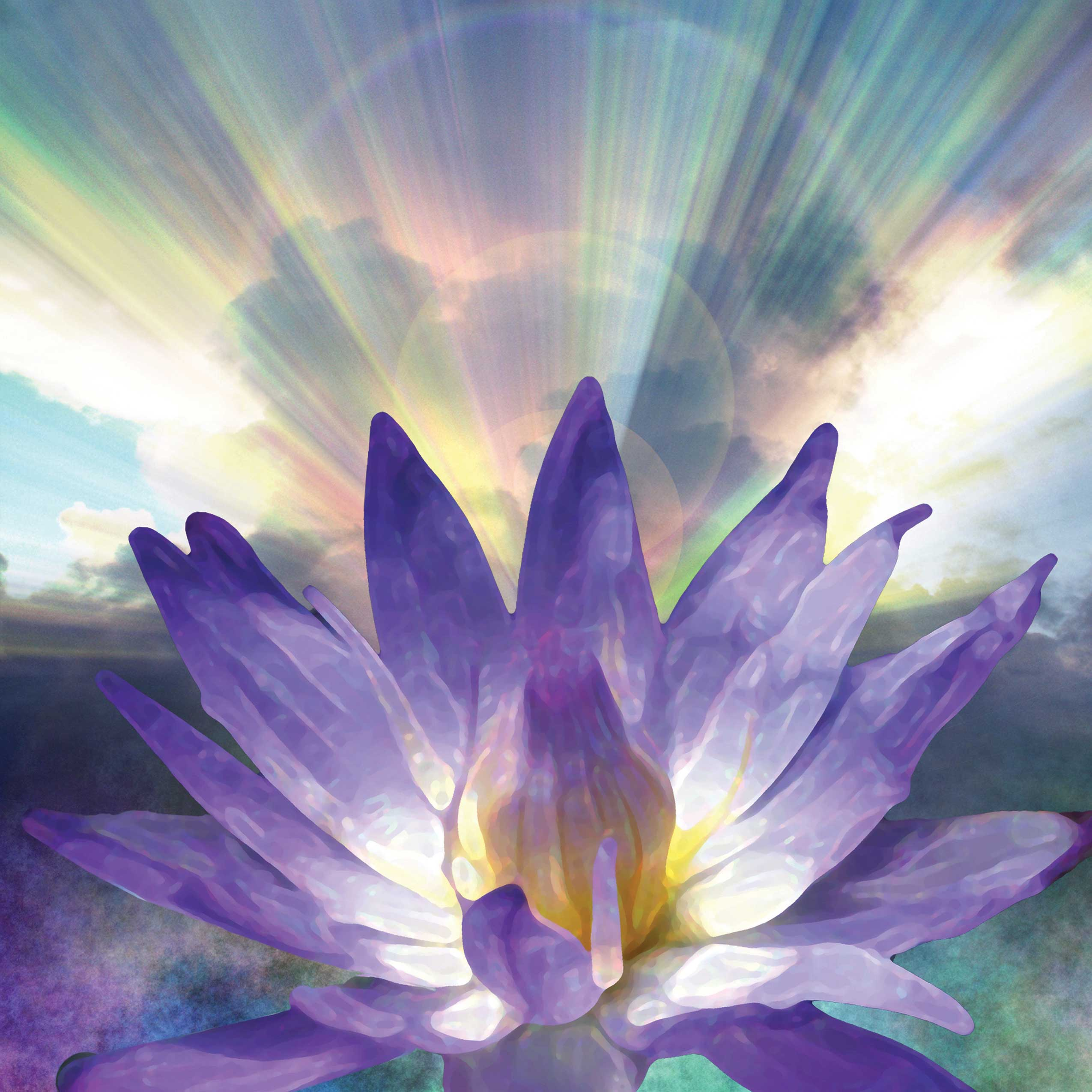 Holistic Lotus Flower Holistic Massage